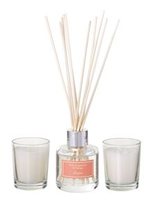 Pink grapefruit & mango diffuser & votive set