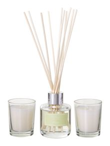 Elderflower & lime diffuser & votive set