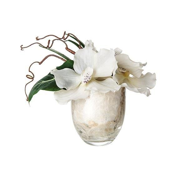 Vanda in pearl glass