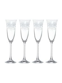 Floral burst champagne glasses, box of 4