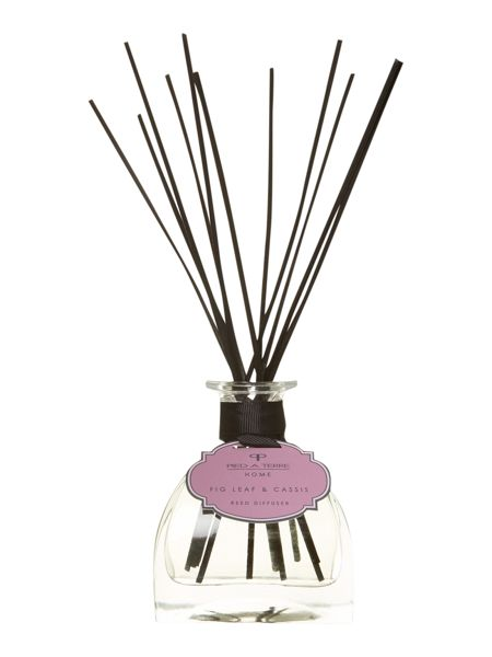 Pied a Terre Fig leaf & cassis diffuser