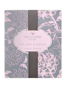 Fig leaf & cassis boxed single candle