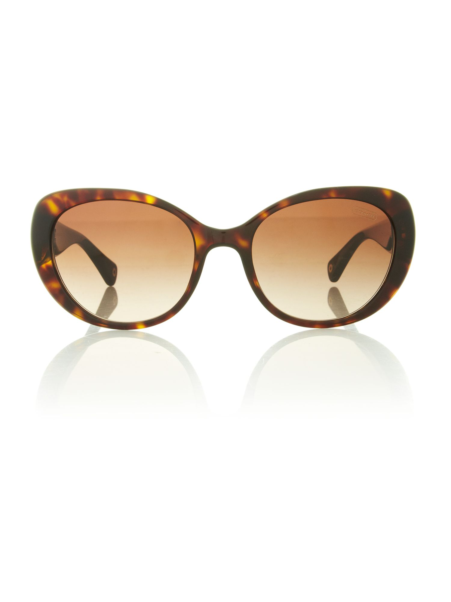 Ladies HC8049 tortoise alexa sunglasses