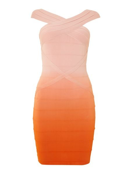 Lipsy Bodycon ombre dress