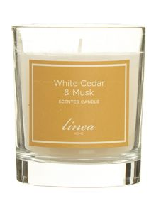 White cedar & musk single candle