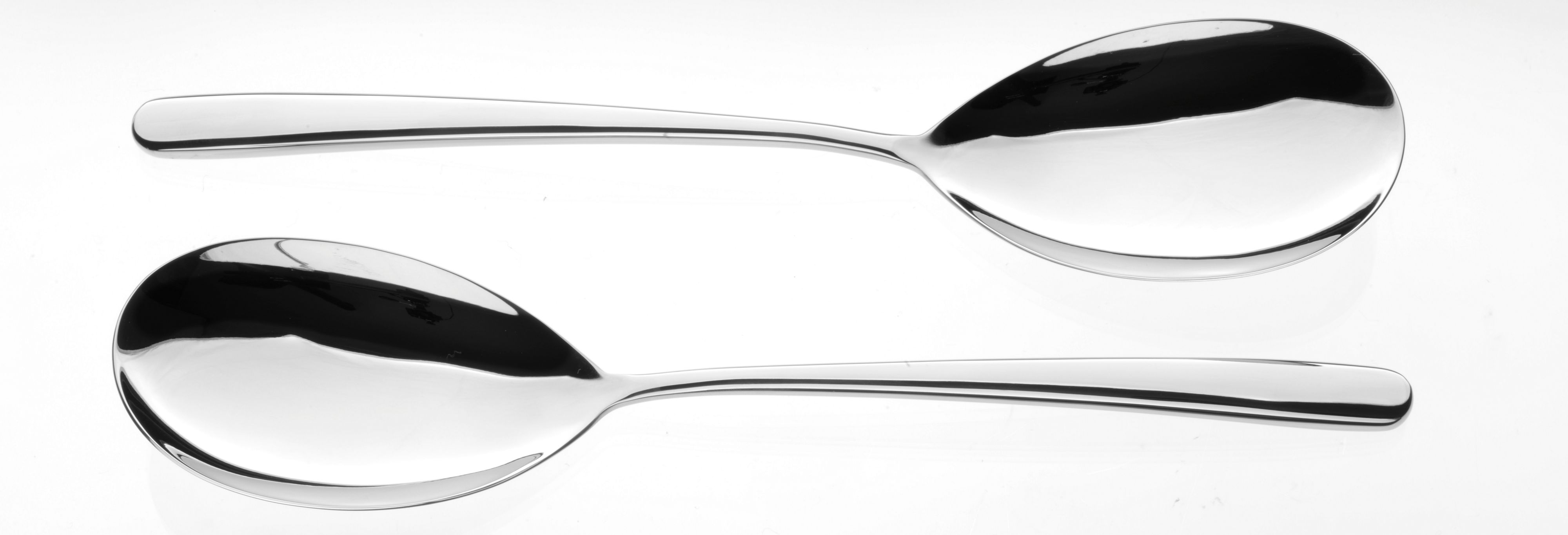Echo stainless steel pair of large serving spoons