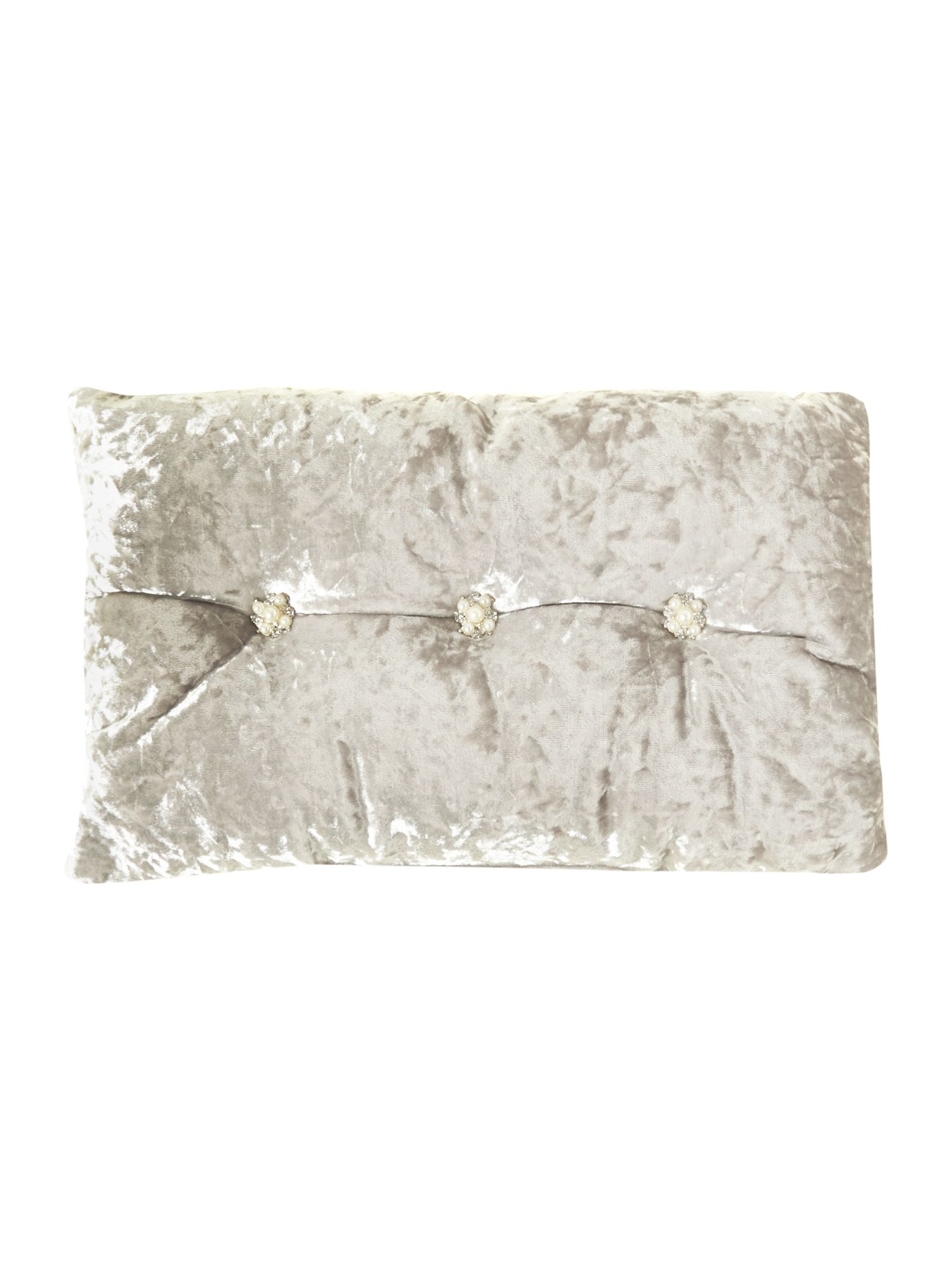 Ramona champagne cushion 25x40
