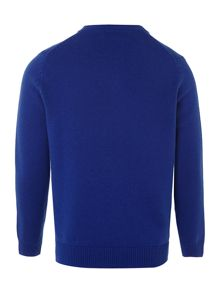 Boy`s long-sleeved v-neck jumper