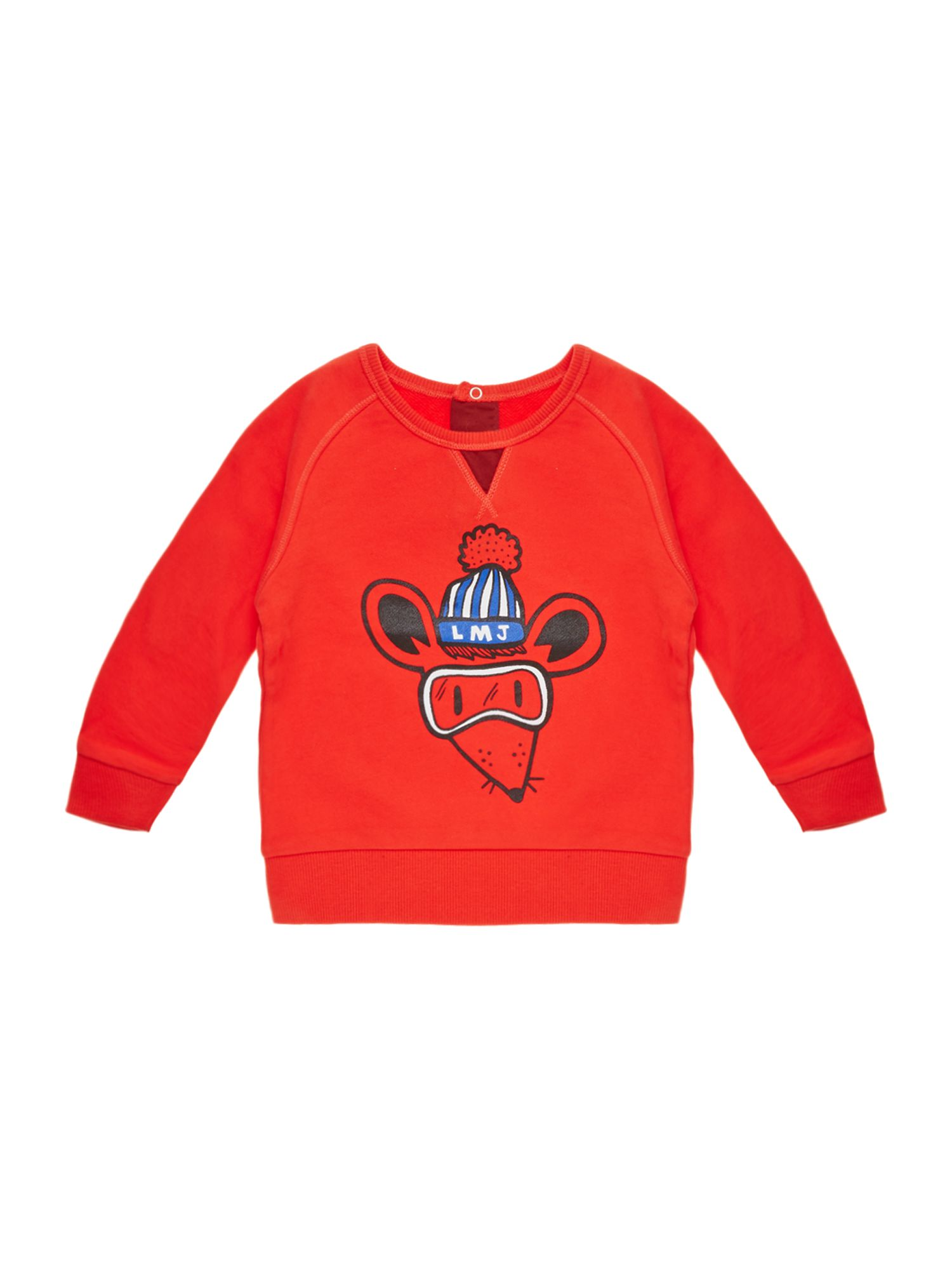Boy`s long sleeve sweater