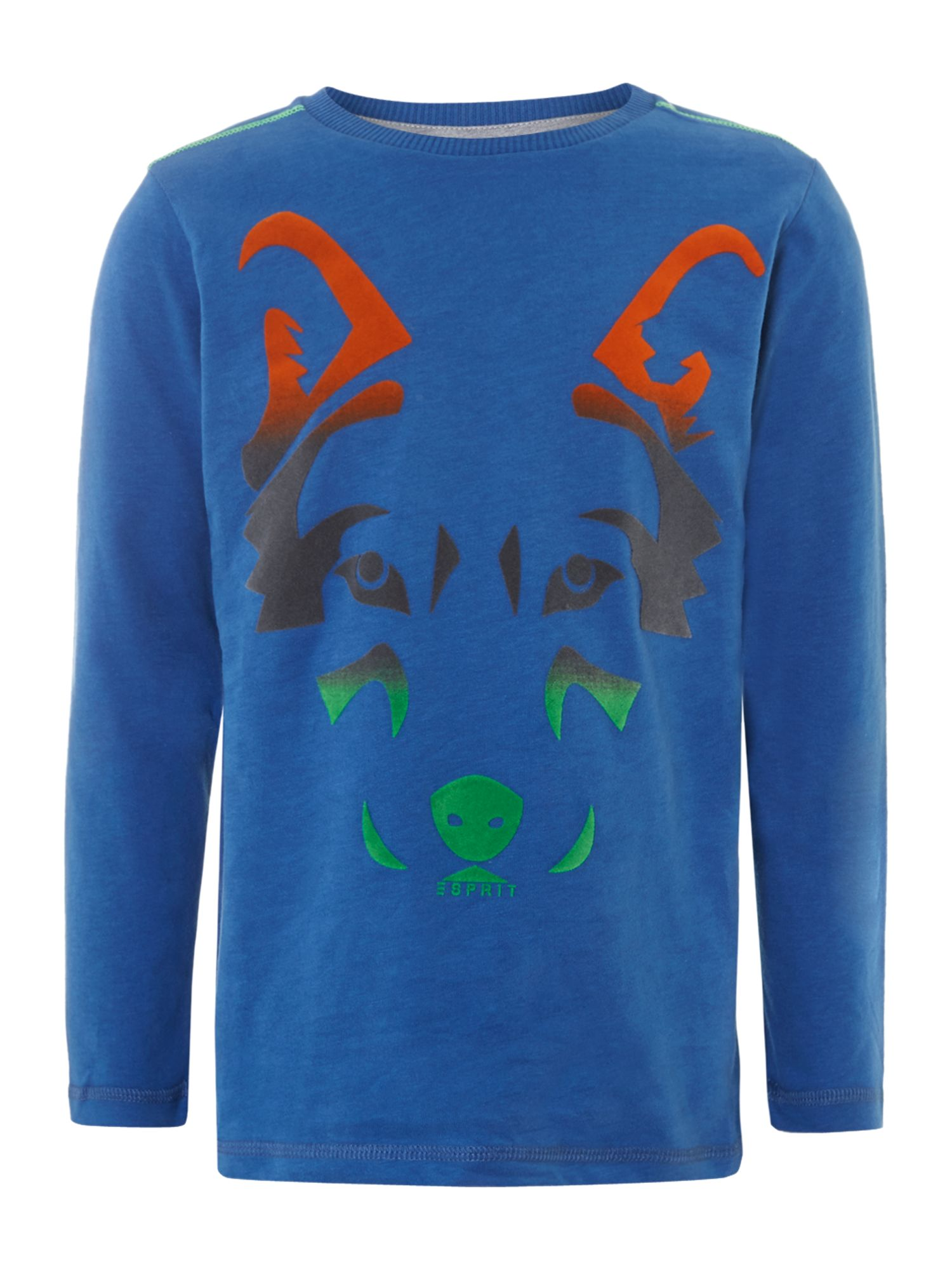 Boy`s fox t-shirt