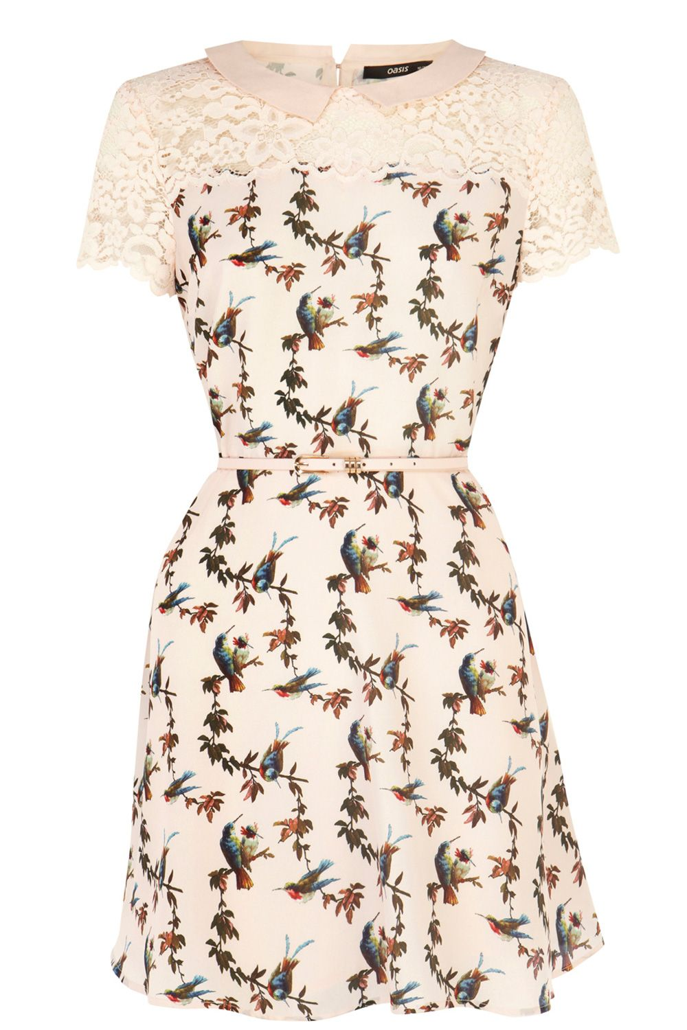 Bird lace trim skater dress