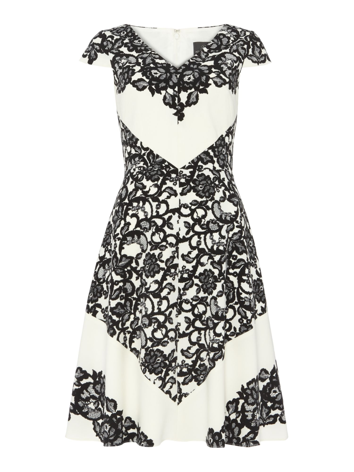 Lace Print Fit and Flare Dress