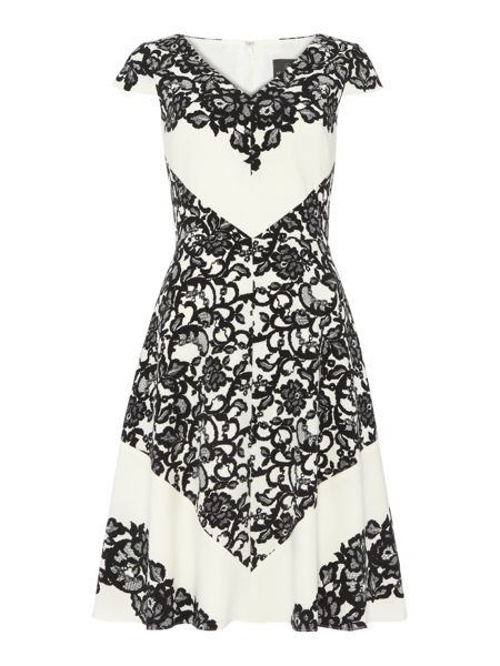 Adrianna Papell Lace Print Fit and Flare Dress