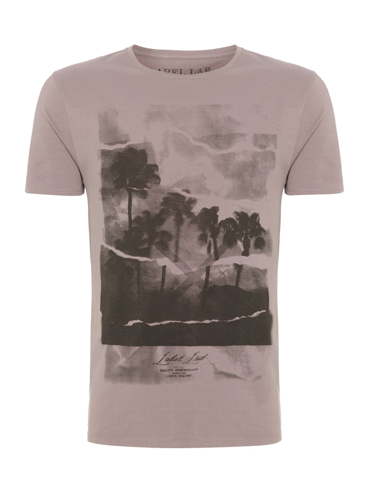 Palms graphic tee