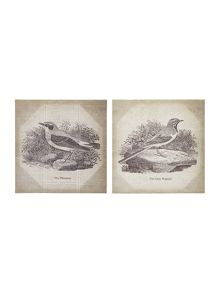 Set of 2 Bird canvas wall art
