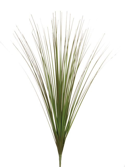 Grass cluster twotone