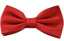 Double TWO Plain bow tie