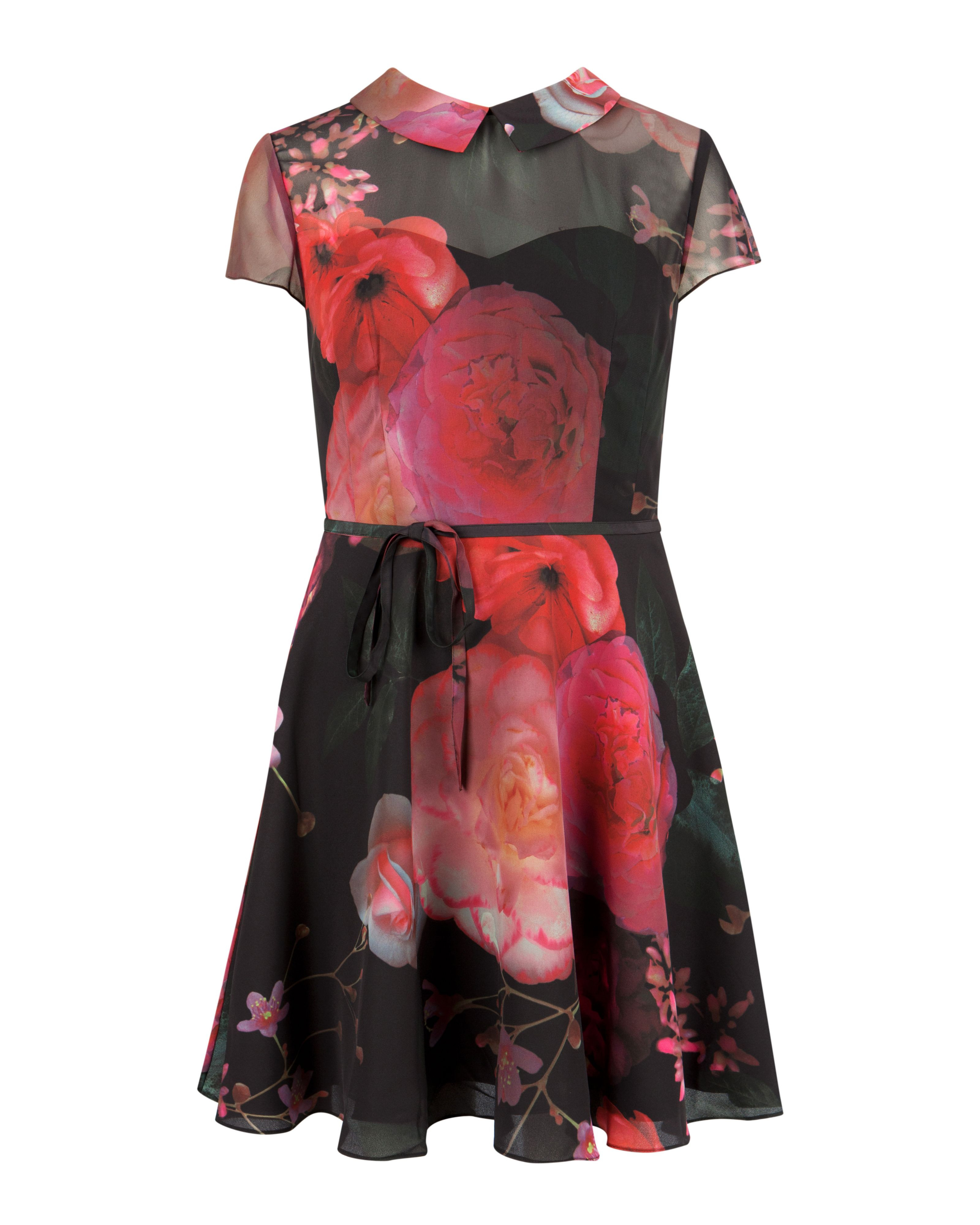 Eudorra natural kingdom print dress