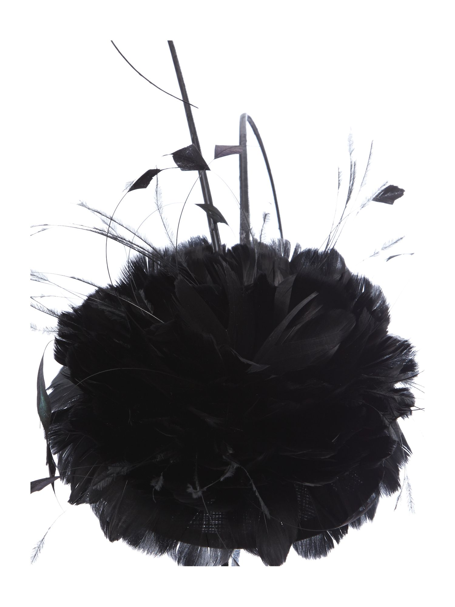 Corsage and feather quill headband