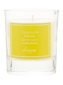 Coconut & marula single candle