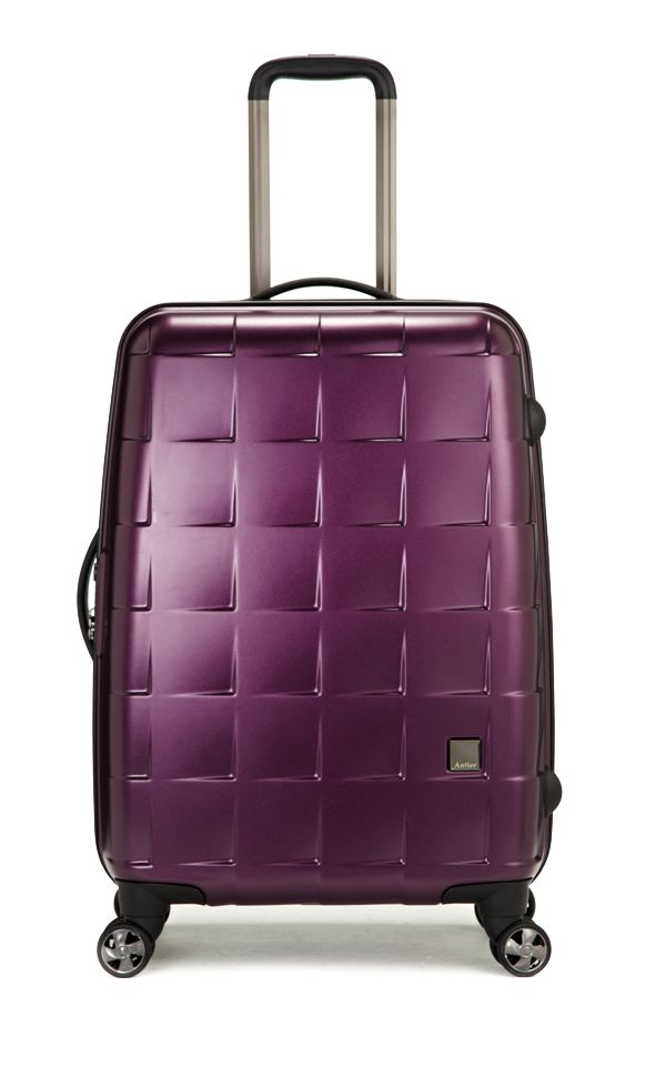 Camden Matt bilberry medium suitcase