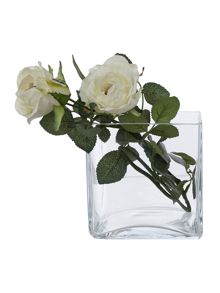 Clear square vase