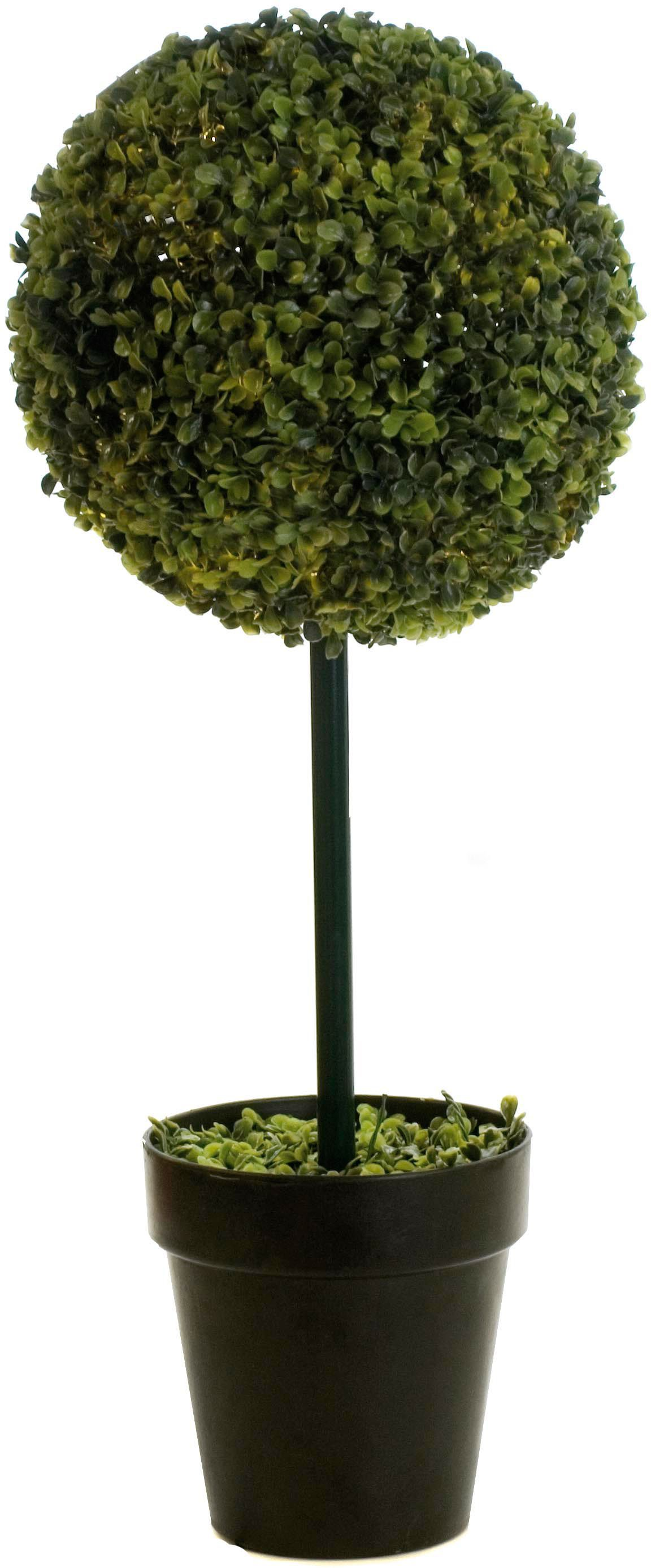 Linea Ball shaped topiary tree, 80cm