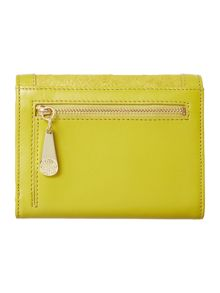Alison small flap over purse