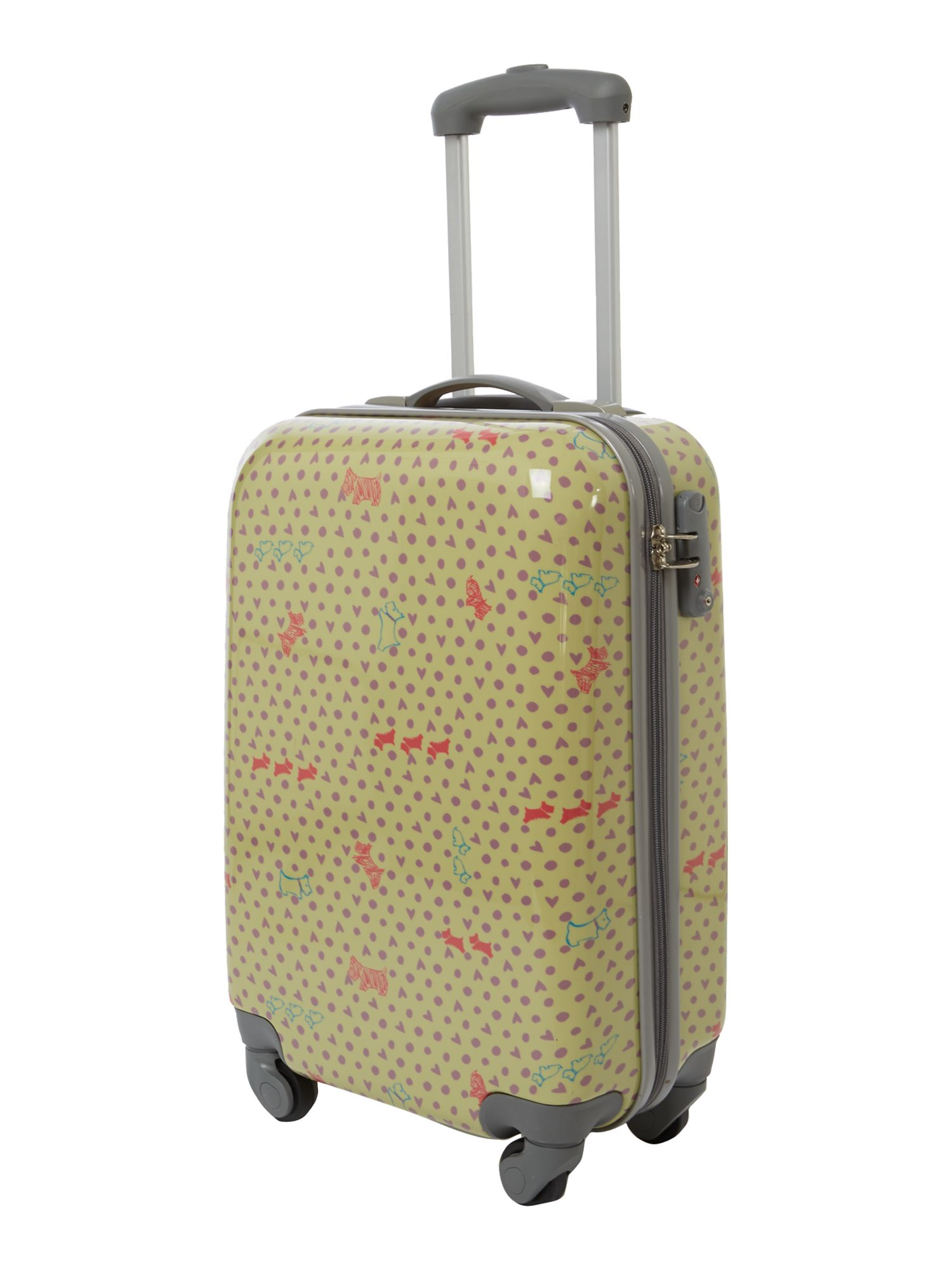 Hibbert pistachio 4 wheel hard cabin trolley case