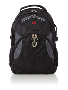 Laptop black and grey backpack