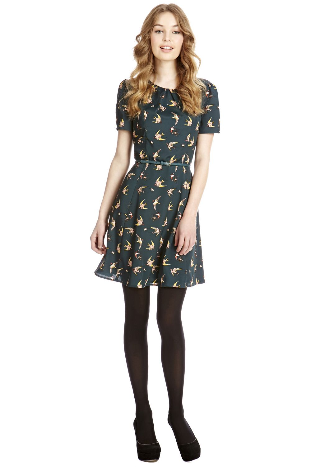 Swallow bird skater dress