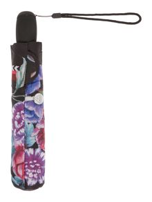 Floral border auto superslim umbrella