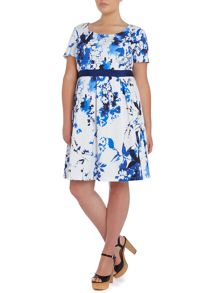 Short sleeved floral printed fit and flare dress