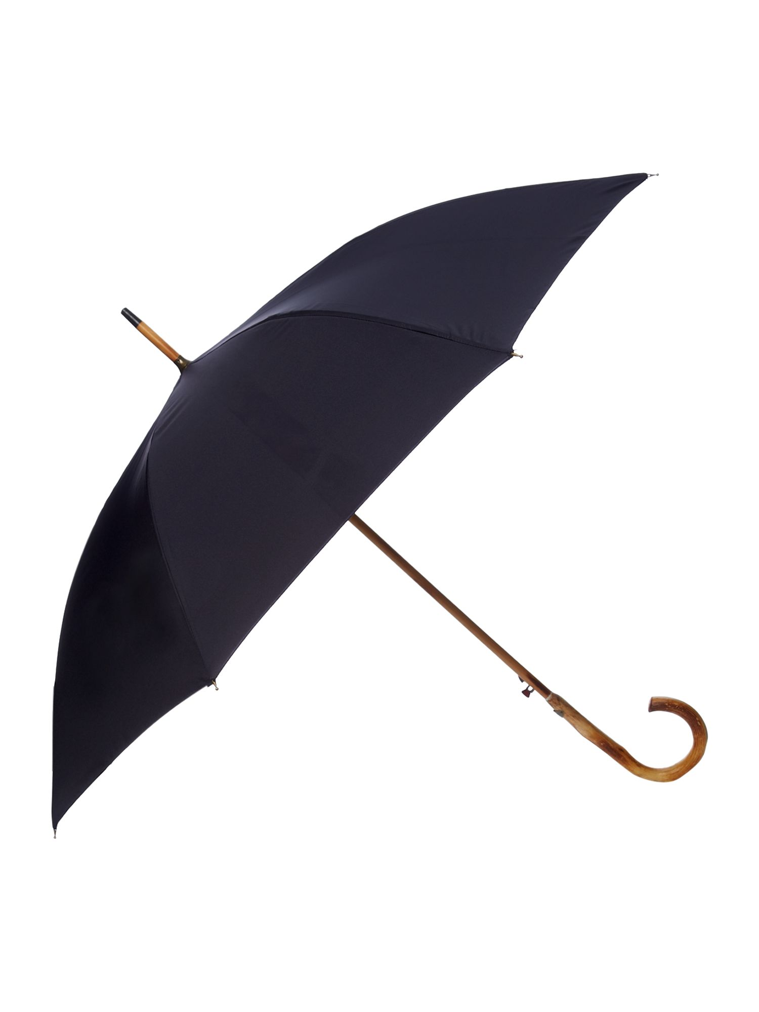 Paisley walker umbrella