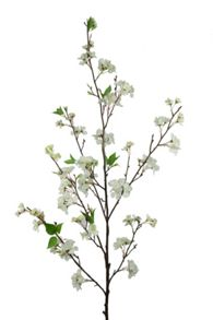 Linea Cream cherry Blossom single stem