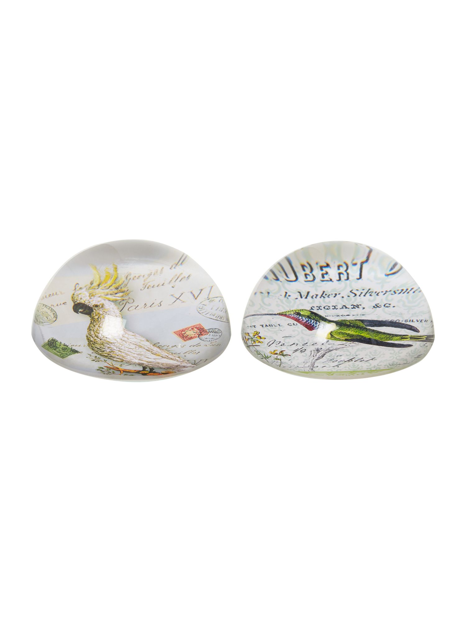 Ornithology set of two paperweights