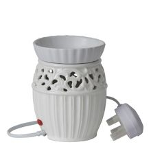 Astbury electric melt warmer