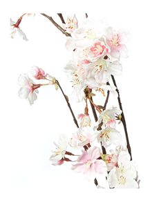 Linea Pink cherry blossom branch