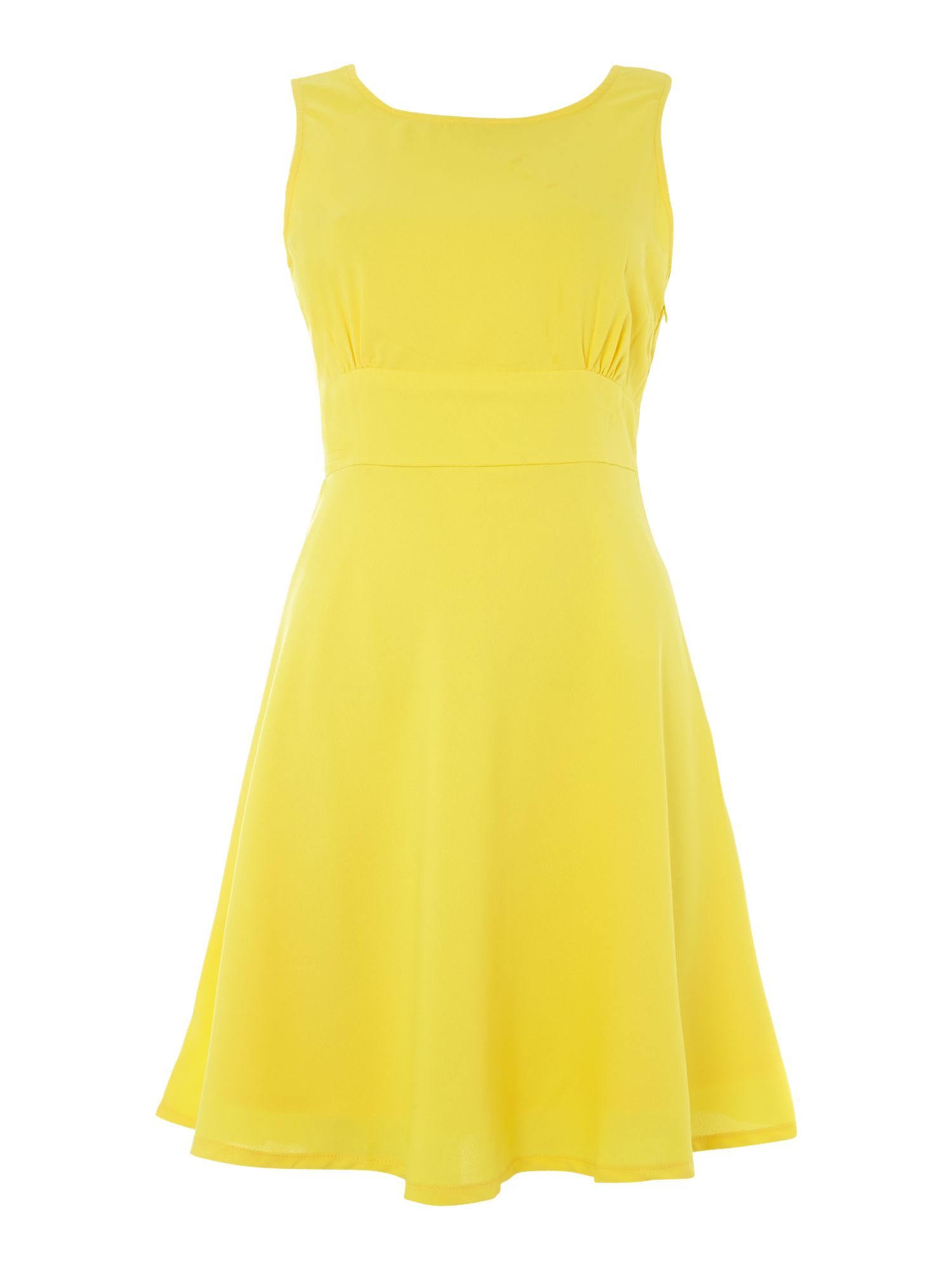 Sleeveless bow back fit and flare dress
