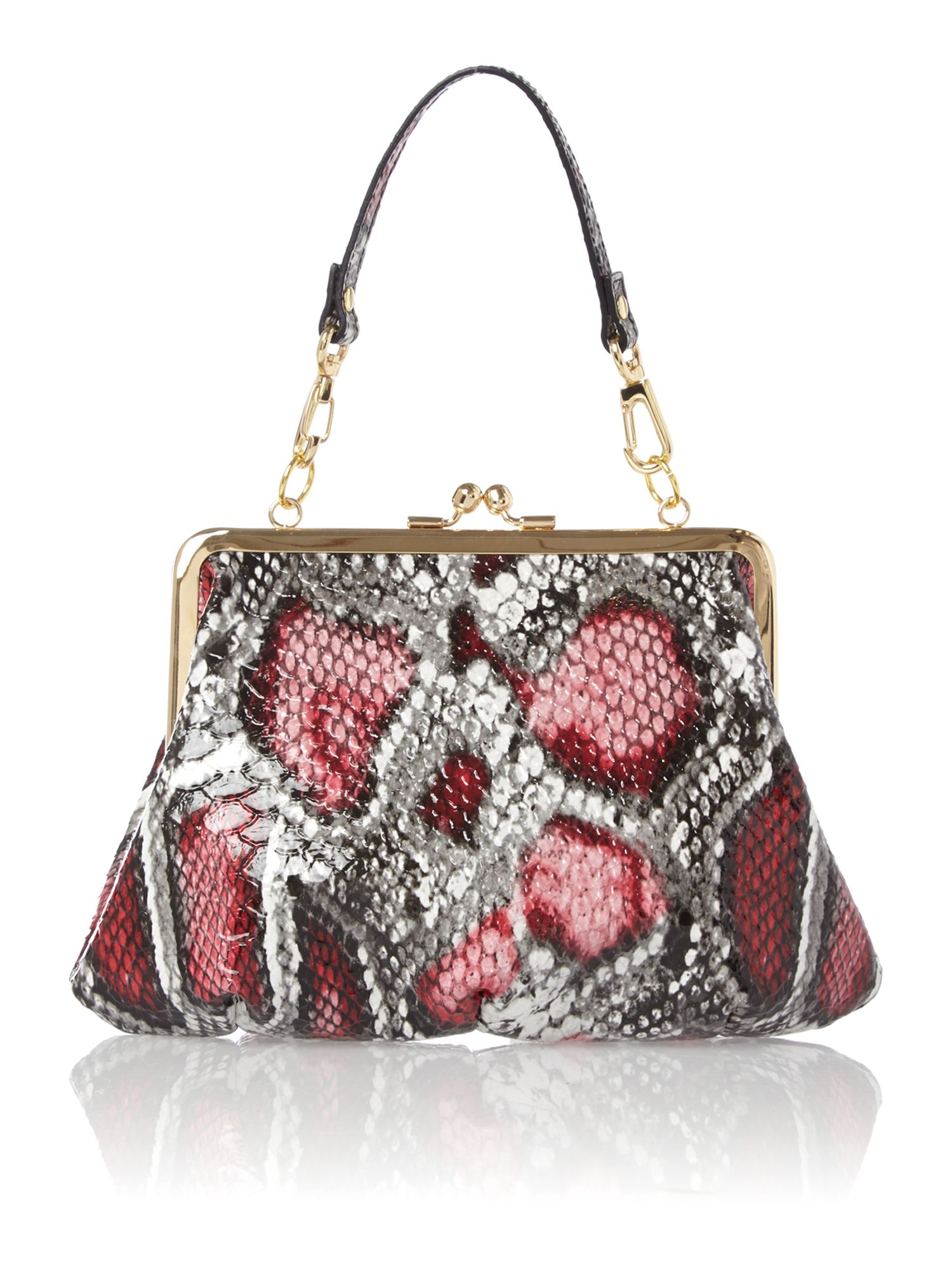Frilly Snake multi coloured frame purse