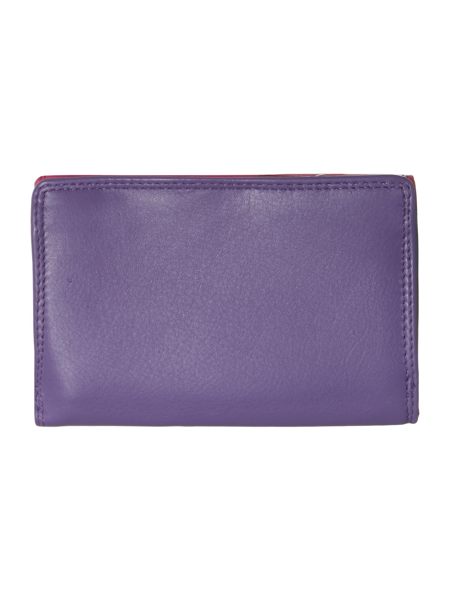 Multi coloured internal medium flapover purse