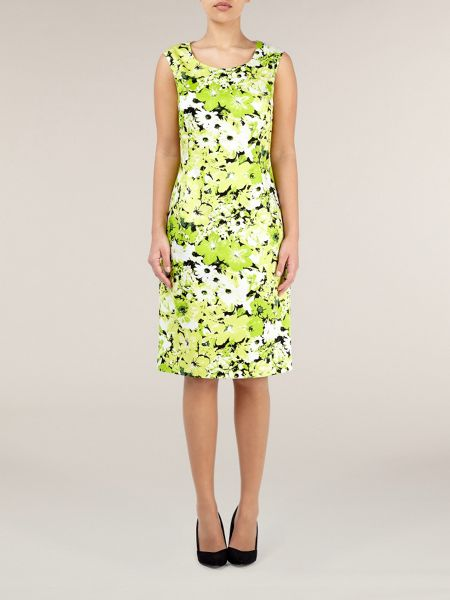 Precis Petite Citrus floral print shift dress