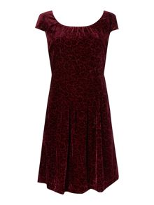 Dickins & Jones Velvet rose devore dress