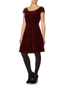 Velvet rose devore dress