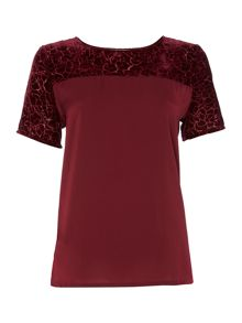 Velvet rose devore top