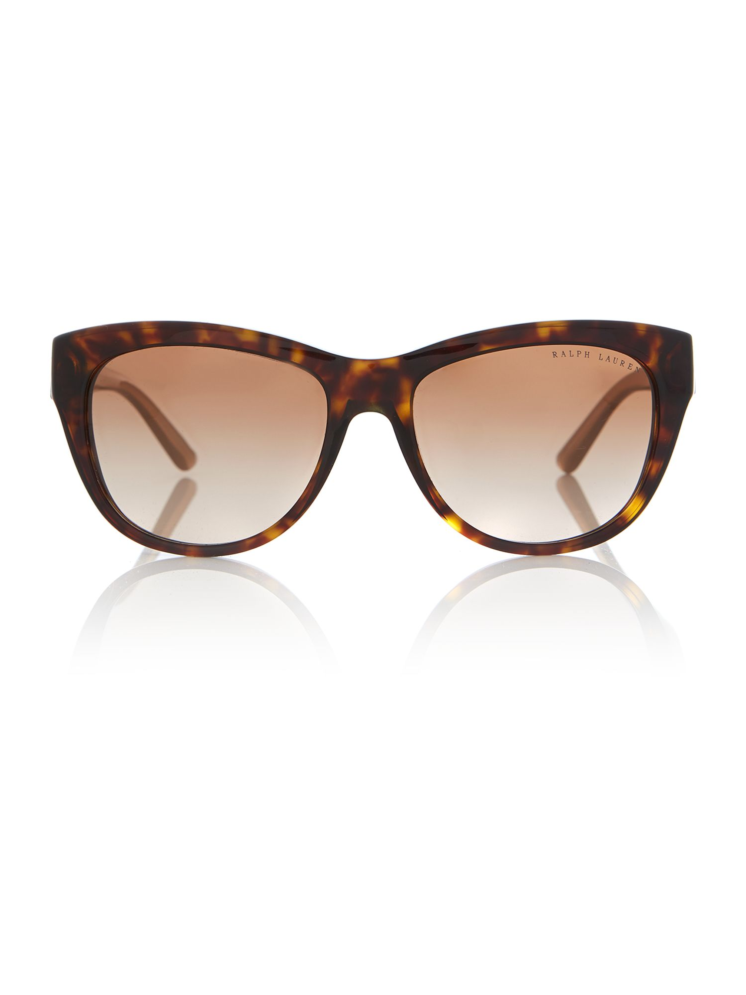 Women`s brown gradient butterfly sunglasses