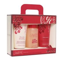 Wild Fig & Cranberry Aromatic Trio Set