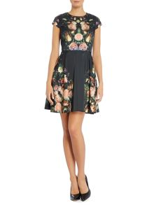 Fit and flare dress with rose placement print