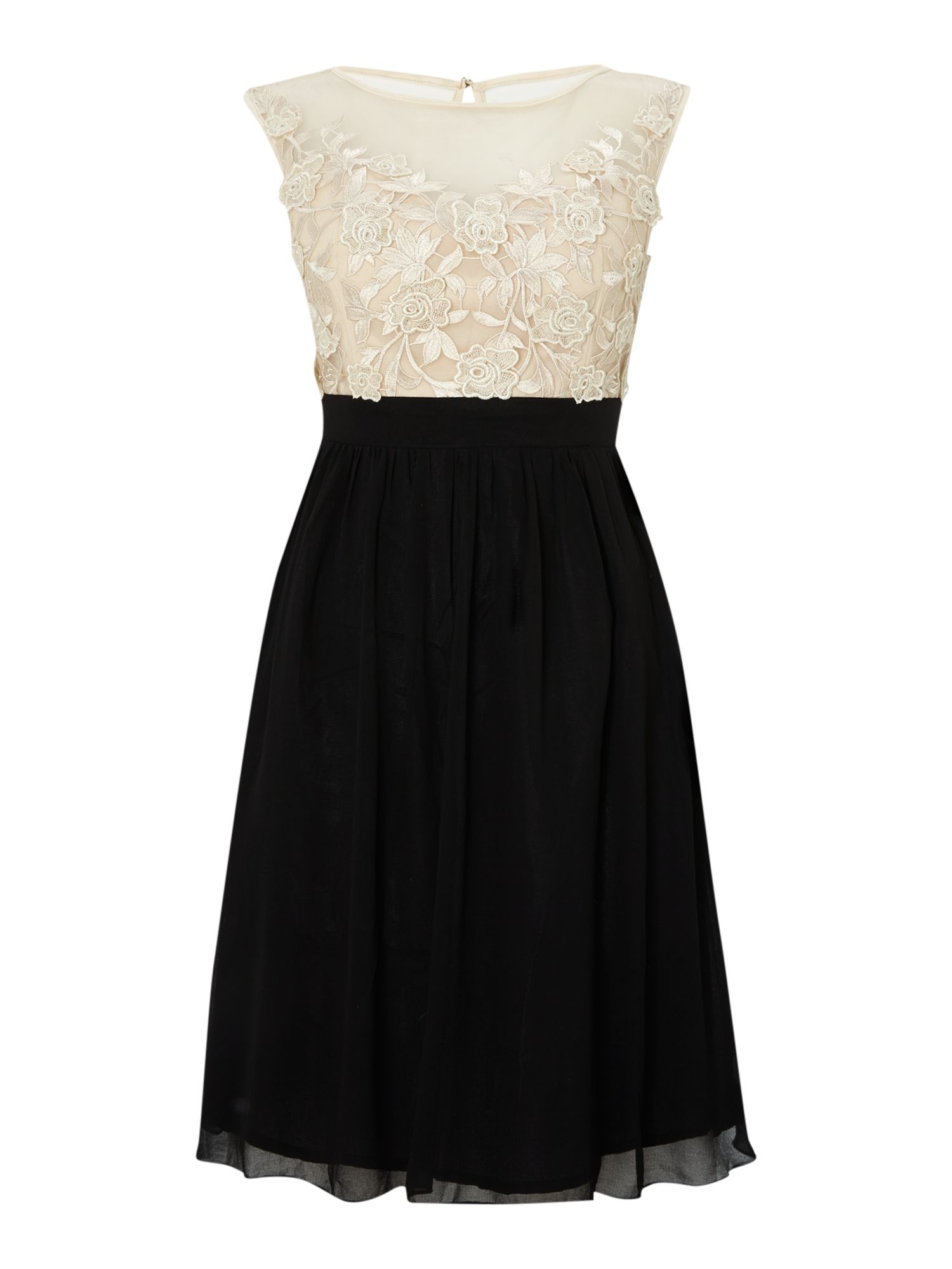 Sleeveless sheer lace top fit and flare dress