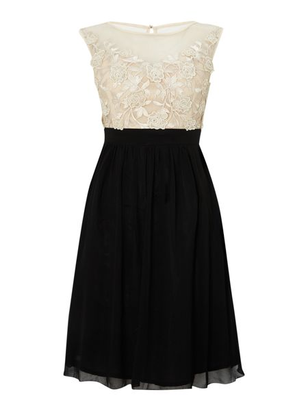 Little Mistress Sleeveless sheer lace top fit and flare dress